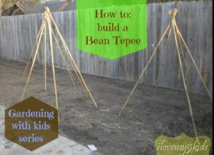 How to build a Bean Tepee @loving5kids