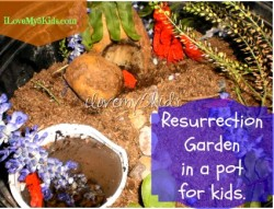Resurrection Garden in a Pot