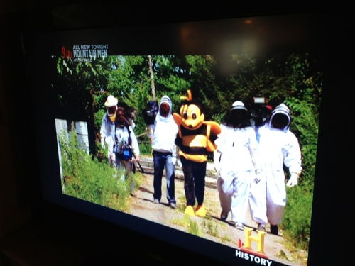 History Channel BEES