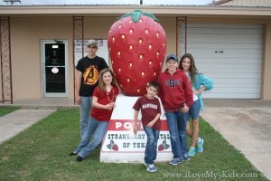 Worlds Largest Strawberry