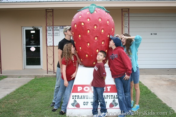 World's Largest Strawberry ilovemy5kids