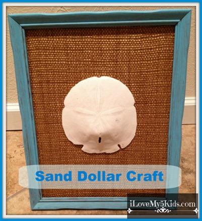 Sand Dollar Craft