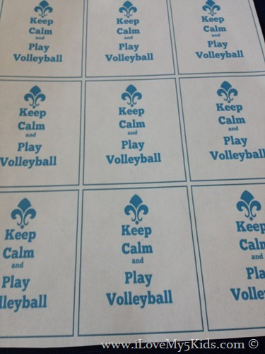 Volleyball Party Free Printables