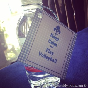 Keep Calm and Play Volleyball Free Printable