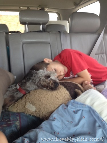 Moving5kids and sleeping dog