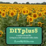 DIYplus5