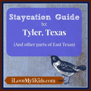 Staycation Ideas Tyler Texas