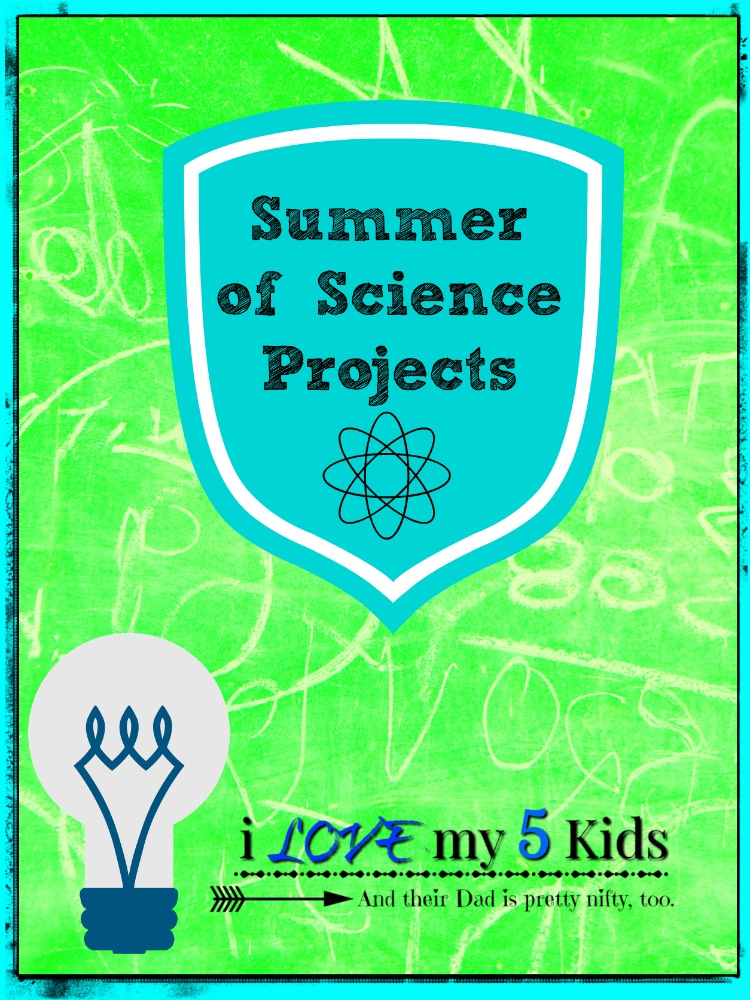 summer of science projects