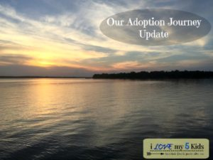 Adoption Journey Update Number 1