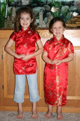 Chinese New Year's Celebration for Homeschoolers