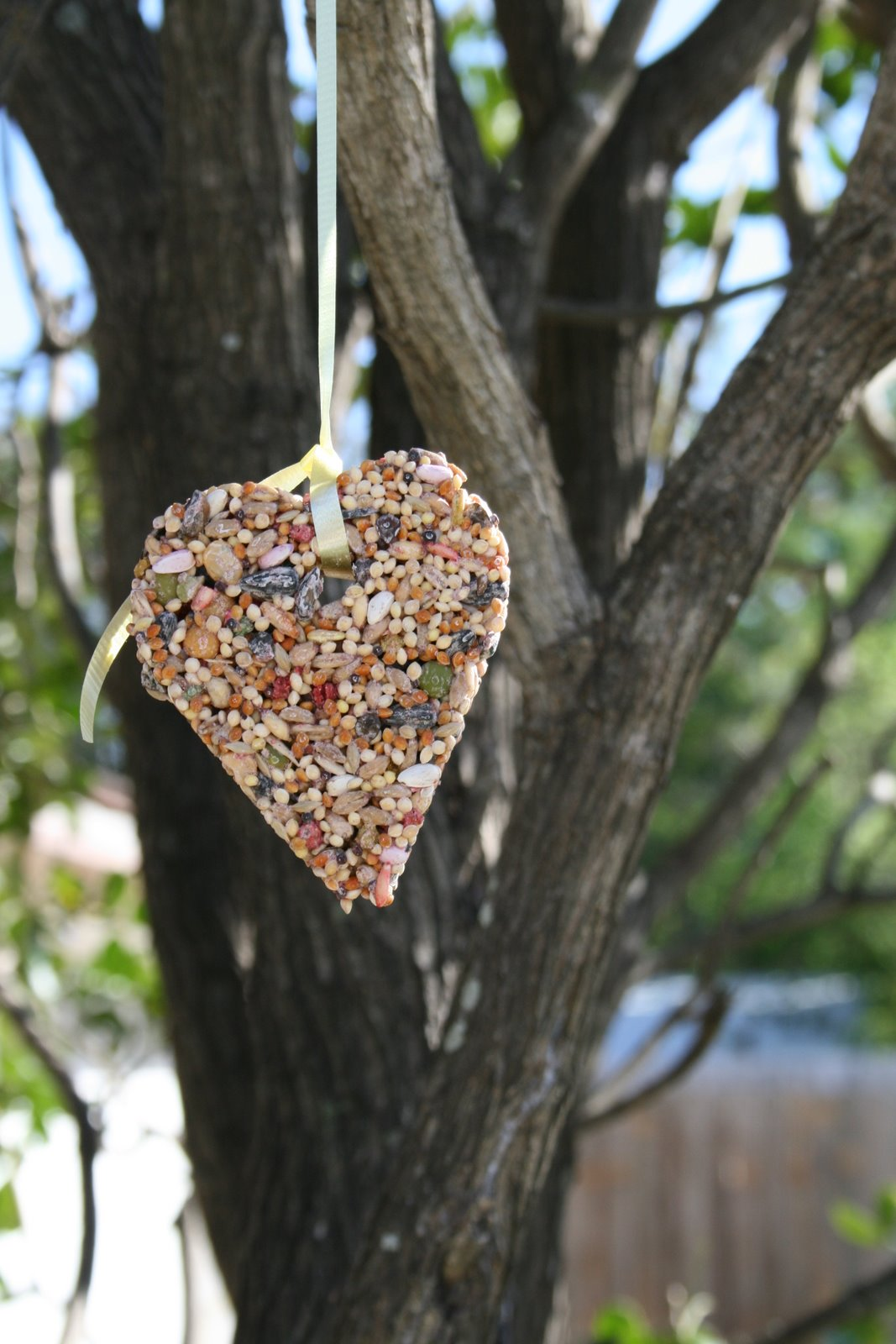 Bird seed craft for kids for Bird seed glue recipe